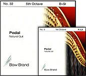 pedal_gut